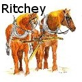 Gretchen Ritchey - Red Horses - Water Color