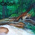 Heather Caton - dunns river - Paintings