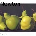 Johnathan Roy Newton - Pear - Oil Painting