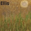 Steve Ellis - Across the Marsh - Paintings
