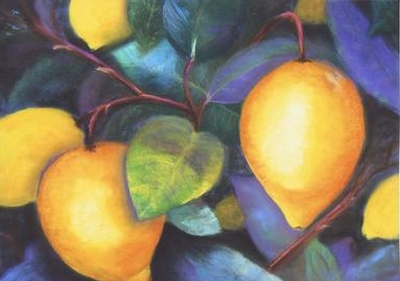 Shea's Lemons