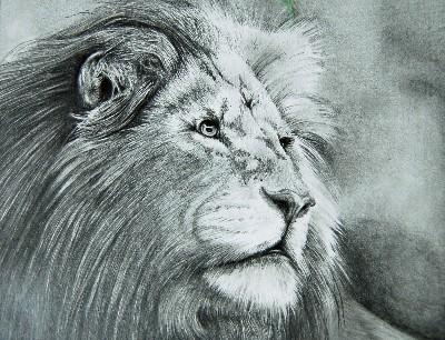 Serengeti King
