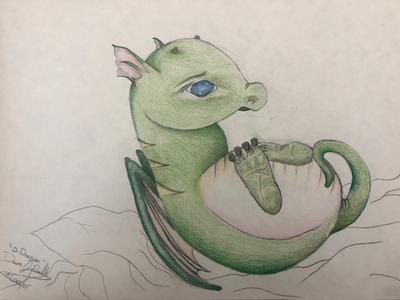 B. Dragon