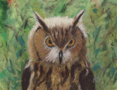 Doris Kucik Owl