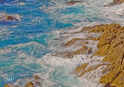 Turquoise Surf - Point Lobos, Carmel, California - Canvas Giclee