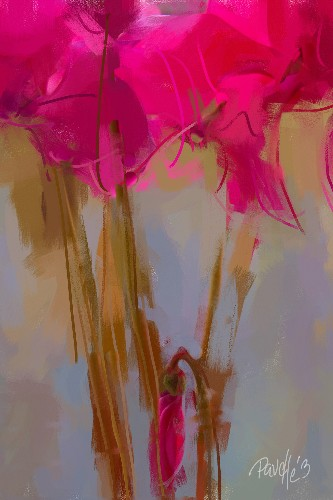 Cyclamen Understudy - Canvas Giclee