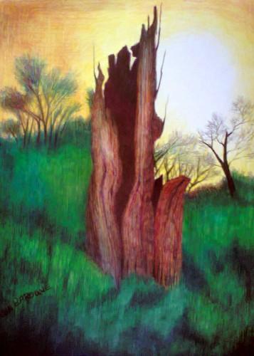 Rotting tree at Lullingstone