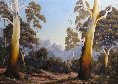 THE SCENT OF GUMTREES