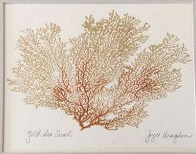 Joyce Bragdon