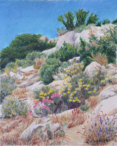 Julianne Ricksecker Wildflowers, Culp Valley