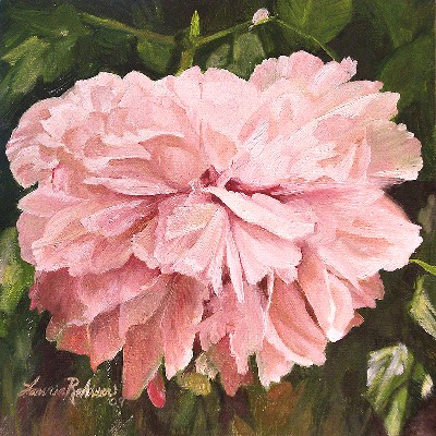 Laurie Rohner Studio A Single Peony