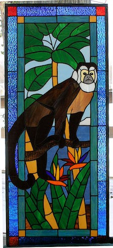Capuchin Monkey Window