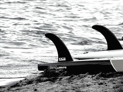 Riley Yates Holden SURFBOARD