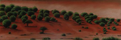 Tammy J Schuetz New Mexico Red Desert
