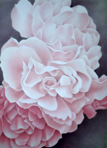 Terri Meyers Three Pink Roses