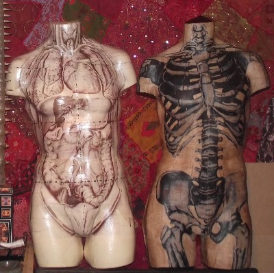 Anatomical Wall hanging