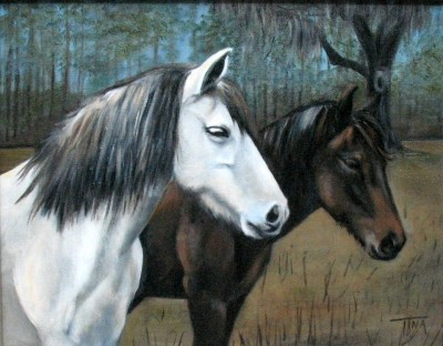 Cracker Horses