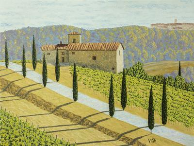 Tuscany farm and vineyards