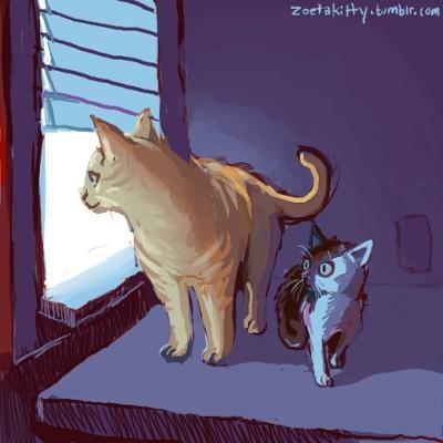 Lunar Eclipse Kitties