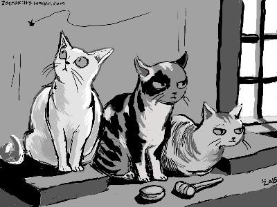 Judge Kitties