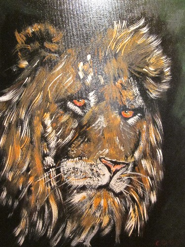 chris farrell cooper African Male Lion
