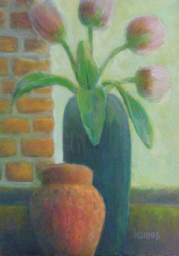 My pink tulip
