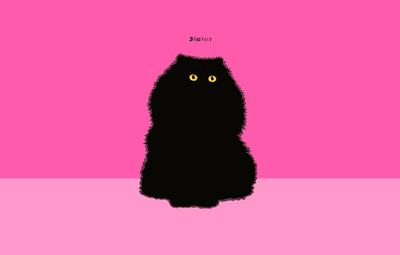 Puffy Cat on Deep Pink